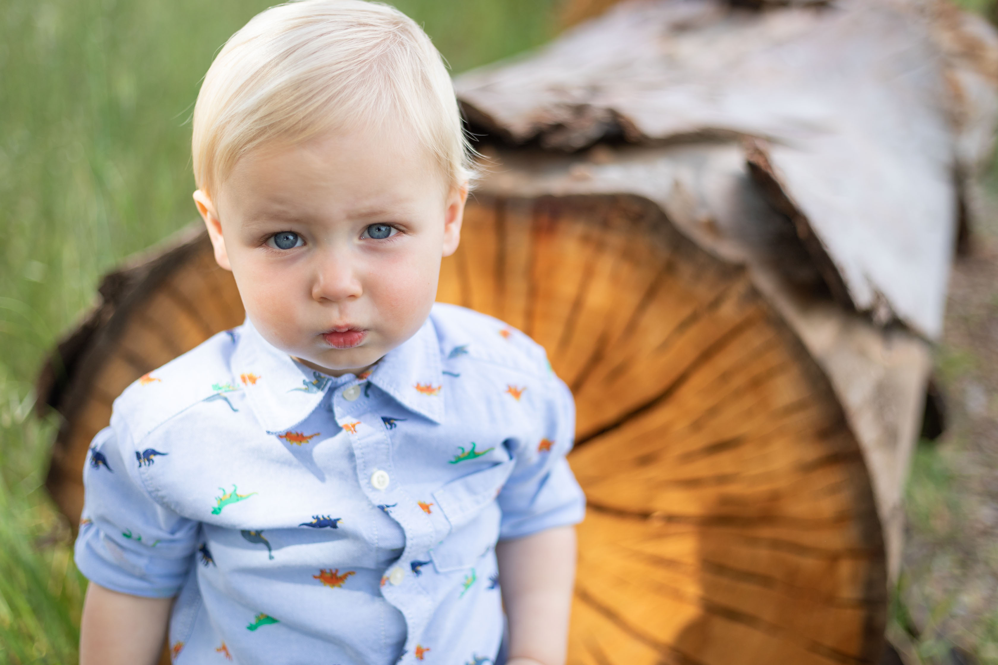 child in front of a log