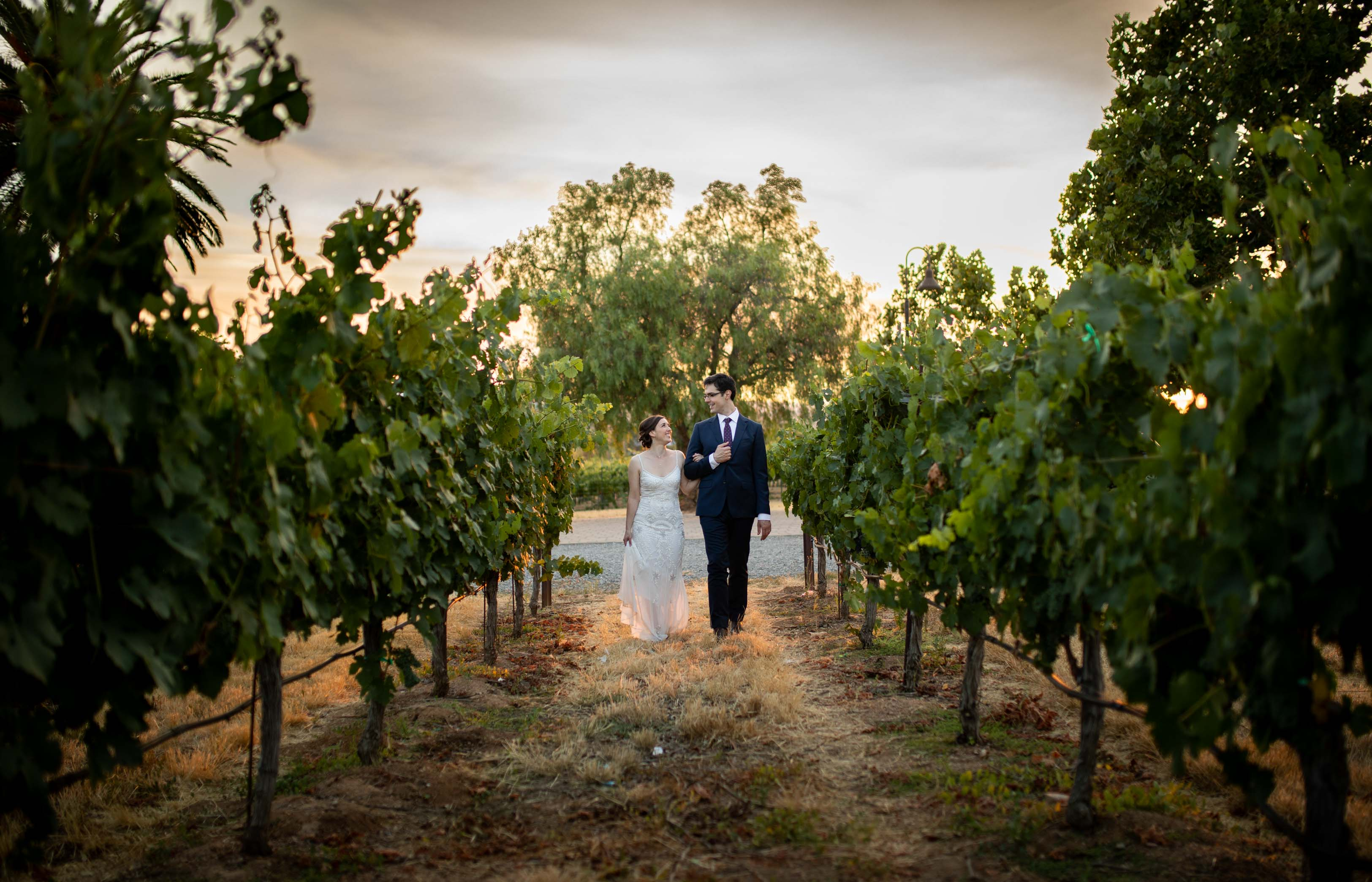 bride and groom walking down vineyard at sunset