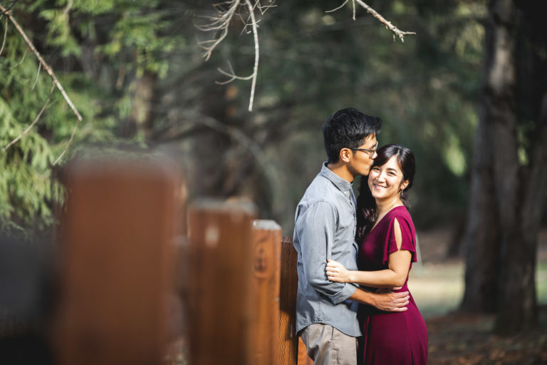 Miki & Erik Engagement Shoot at Sanborn County Park